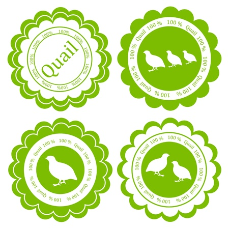 Quail meat vector background label stamp green farm ecology concept