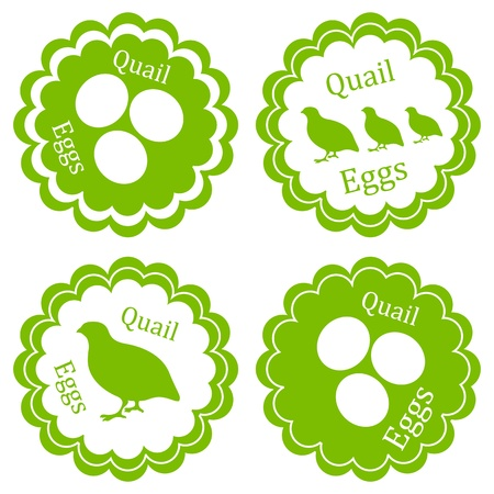 Quail eggs vector background label stamp green farm ecology concept Imagens - 18580800