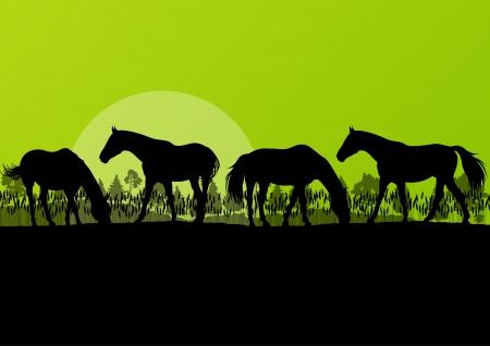 parapente: Caballos de granja Campo siluetas en la naturaleza salvaje bosque de monta?a paisaje ilustraci?n de fondo vector