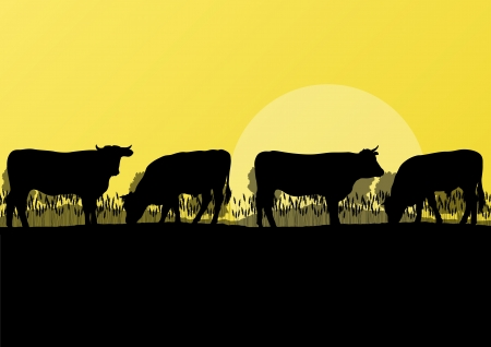 domestic cattle: Beef cattle and milk cow herd countryside farm in wild nature mountain forest landscape illustration background vector