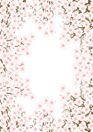 cherry blossom: Cherry blossom branch vector background for poster