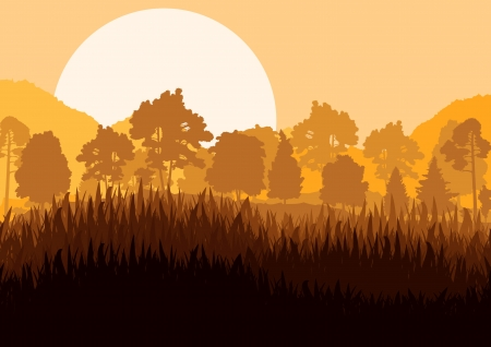Wild mountain forest nature landscape scene background illustration vector for poster Stock Vector - 19181714