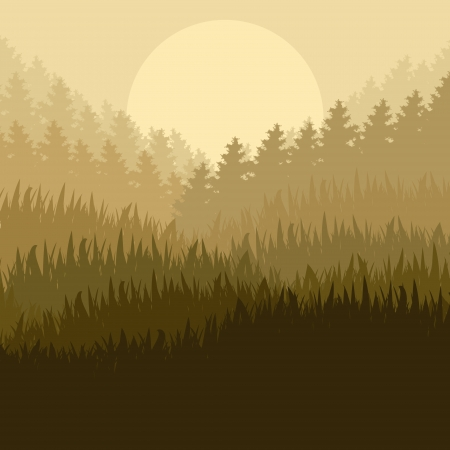 Wild mountain forest nature landscape scene background illustration vector for poster Stock Vector - 19181856