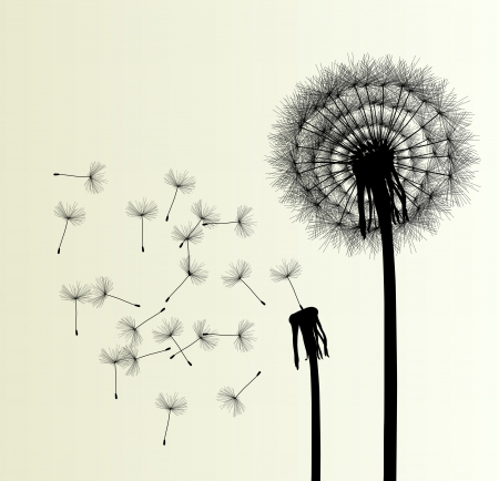 overblown: Blow Dandelion  background for poster