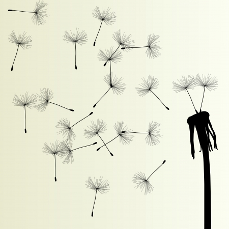 Blow Dandelion vector background for poster Vector