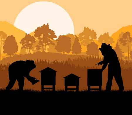 apiary: Beekeeper working in apiary background
