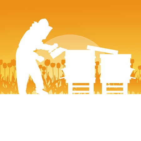 beekeeper: Beekeeper working in apiary background landscape for poster