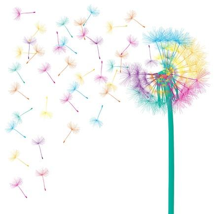 Dandelion Blow concept abstrait de fond pour l'affiche Banque d'images - 20900051