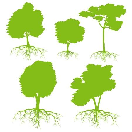 セットの背景生態学概念の根を持つツリー  イラスト・ベクター素材