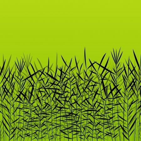 untamed: Hierba, ca�a y plantas silvestres siluetas detallada ilustraci�n de fondo Vectores