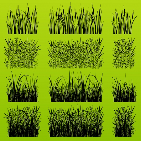 grass cutting: Grass, reed and wild plants detailed silhouettes illustration background