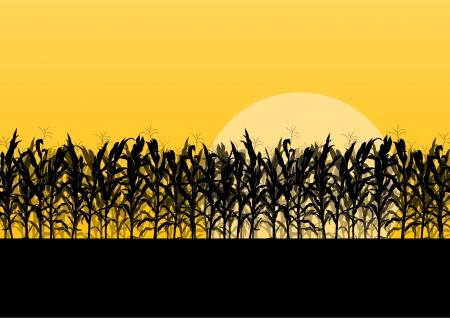 Campo di grano dettagliata campagna, paesaggio, illustrazione vettoriale sfondo