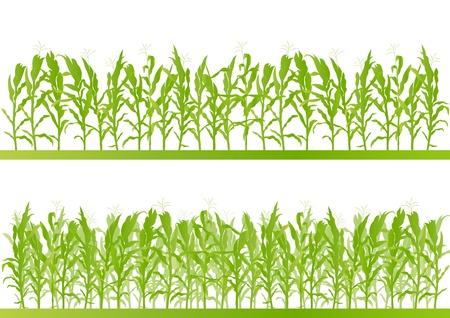 옥수수 밭 자세한 시골 풍경 그림 배경 벡터