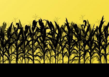 Gebied van het graan gedetailleerde landelijke landschap illustratie achtergrond vector Stockfoto - 21445919