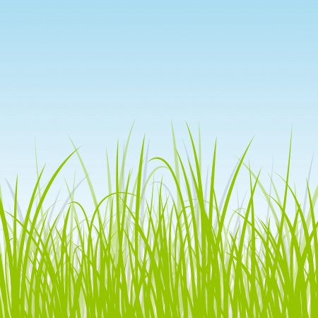 untamed: Grass, reed and wild plants detailed silhouettes illustration background