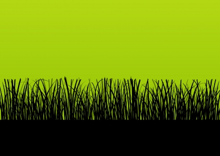 grass silhouette: Fresh grass landscape detailed silhouette illustration background vector for poster