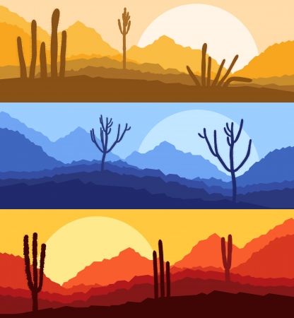 desert sunset: Desert cactus plants wild nature landscape illustration background vector