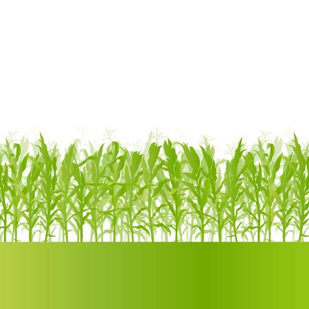 Campo di mais campagna dettagliata ecologia del paesaggio illustrazione vettoriale