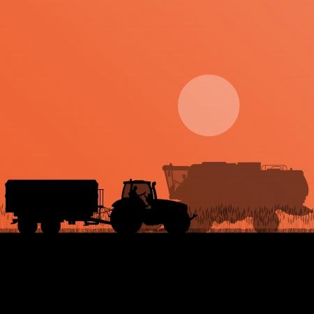 cosechadora: Agrícola cosechadoras y tractores en grano campo estacional farming paisaje escena ilustración de fondo vector Vectores