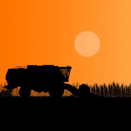 combinar: Agrícola cosechadora en campo de grano estacional farming paisaje escena ilustración de fondo vector Vectores