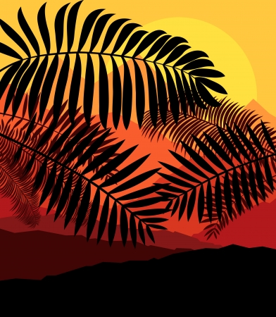 palm tree silhouette: Palms tropical sunset mysterious vector background landscape