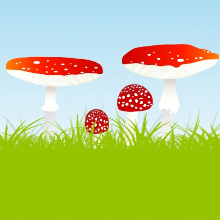 agaric: Fly agaric mushroom family vector background concept