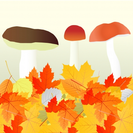 Mushrooms and leaves vector autumn background concept Vector