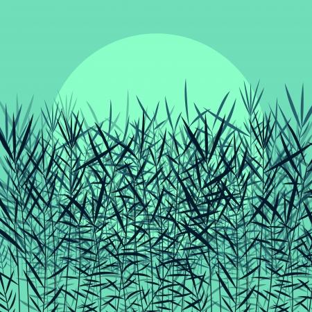 untamed: Hierba, ca�a y plantas silvestres siluetas detallada ilustraci�n de fondo vector de luz de la luna