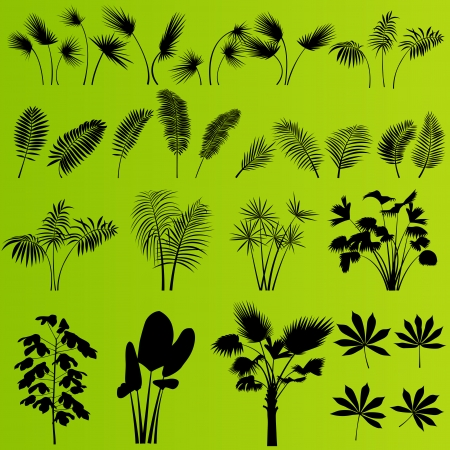 Tropical exotic jungle grass and plants detailed silhouettes landscape illustration collection background vector Stock Vector - 23814138