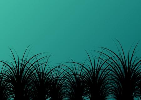 untamed: Grass detallada silueta del paisaje ilustraci�n de fondo vector para el cartel