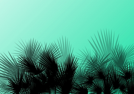 palm branch: Palm tree silhouettes wild nature landscape background illustration vector for poster