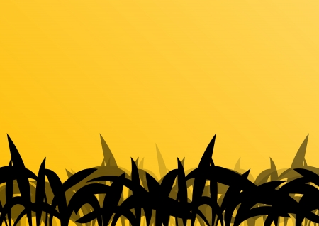 untamed: Tropical exotic jungle grass and plants detailed silhouettes landscape illustration background vector