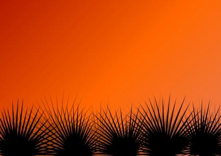 untamed: Tropical hierba ex�tica selva y las plantas detallada siluetas paisaje de fondo ilustraci�n vectorial
