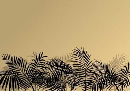 untamed: Plantas del bosque ex�tico de la selva, hojas y hierba silueta detallada ilustraci�n vectorial paisaje de fondo para el cartel