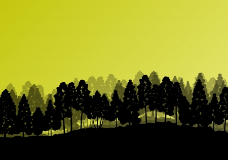 oak tree silhouette: Forest trees silhouettes natural wild landscape detailed illustration background Illustration