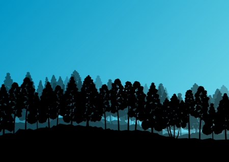 cedar tree: Forest trees silhouettes natural wild landscape detailed illustration background Illustration