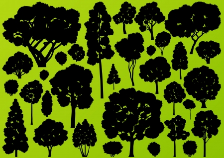 forestry: Natural wild tree, bush and scrub plants detailed forest silhouettes illustration collection background vector