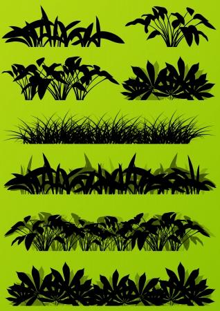 untamed: Ejemplo de la colecci�n Tropical hierba ex�tica selva y siluetas plantas detalladas paisaje de fondo vector concepto verde