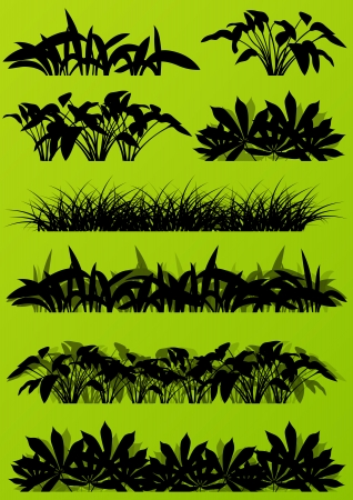 untamed: Tropical exotic jungle grass and plants detailed silhouettes landscape illustration collection background vector green concept