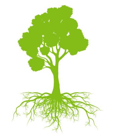 tree roots: Árbol con el fondo de las raíces tarjeta de concepto ecología de vectores para el cartel