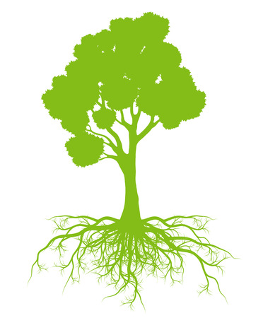 tree roots: Tree with roots background ecology vector concept card for poster