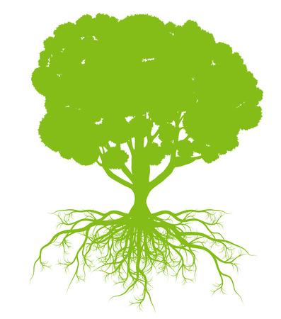 Boom met wortels achtergrond ecologie vector-concept kaart voor poster Stock Illustratie