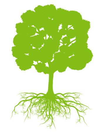 포스터의 뿌리 배경 생태 벡터 개념 카드와 트리