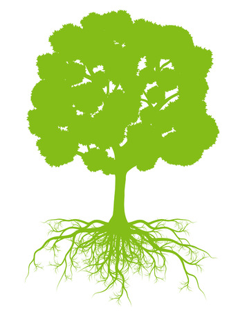Boom met wortels achtergrond ecologie concept vector kaart voor poster