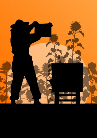 beekeeper: Beekeeper working in apiary vector background in sunflower field