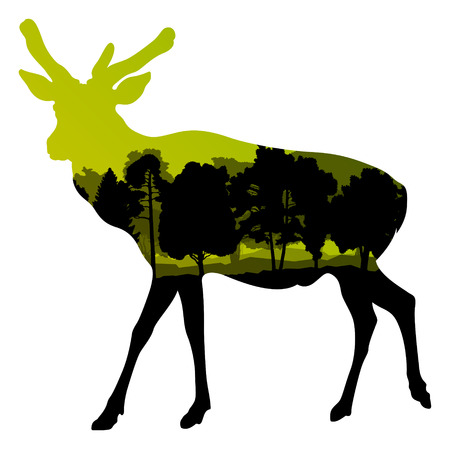wild venison: Deer wild animal silhouette in nature forest landscape abstract background illustration vector Illustration