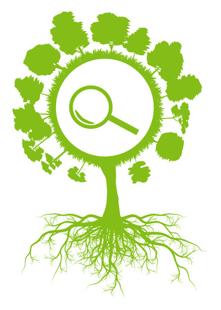 Ecology environmental green tree with roots and magnifier searching symbol vector background concept Vector