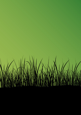 wild herbs: Green grass and plants detailed silhouette landscape illustration abstract background vector