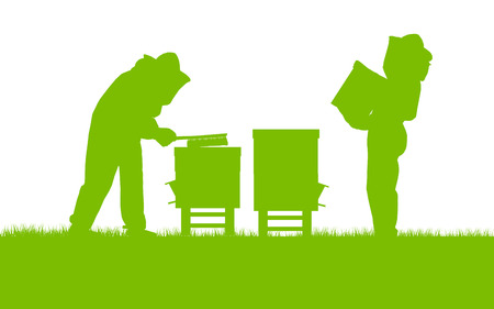 apiculture: Beekeepers working in apiary vector background ecology concept card for poster