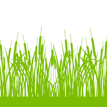 untamed: Grass, wild plants detailed silhouettes illustration background vector for poster